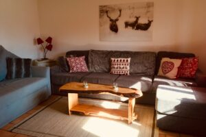 modern living room, chalet style apartment accommodation, ski sauze d'oulx