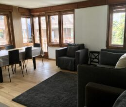 Modern living, kitchen area of ski holiday apartment Belvedere in Sauze d'Oulx